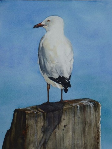 On The Lookout - Watercolour - 35 x 25cms